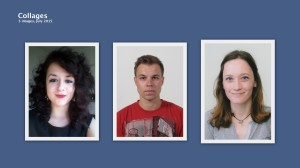 2015 interns , Mare, Matija and Iva